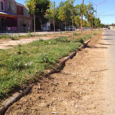 Malestar en Huincul por falta de limpieza en los barrios