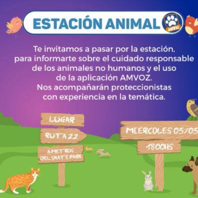 Estación Animal informará sobre derechos animales