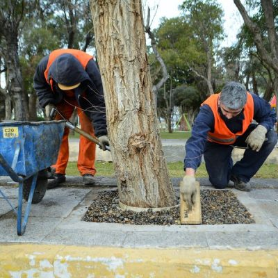 Aplican tecnología para mejorar el riego de espacios verdes