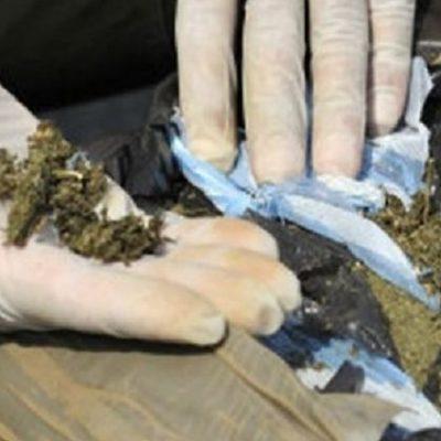 Incineran cerca de 2 mil kilos de droga