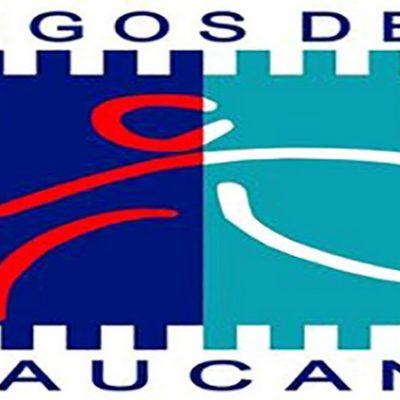 Se cancelaron los Juegos de la Araucanía